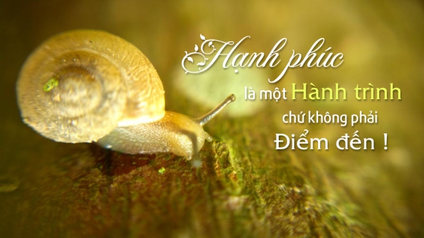 hanh-phuc-hon-nhan